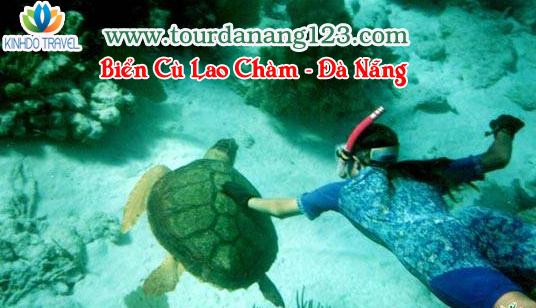 Du lịch biển Cù Lao Chàm - Đà Nẫng