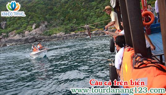 Câu cá trên biển Đà Nẵng