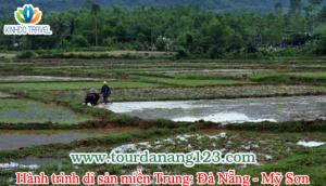 Tour Đà Nẵng - Mỹ Sơn trải nghiệm du lịch cộng đồng
