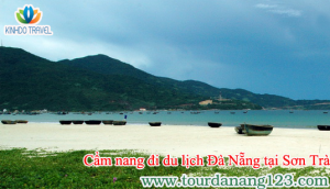 Cẩm nang khi du lịch bán đảo Sơn Trà - Đà Nẵng