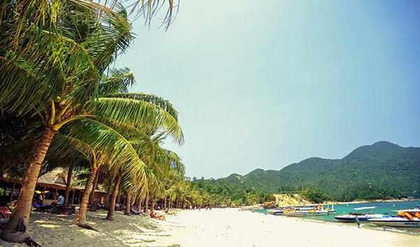 Bãi Chồng có nước biển xanh trong và những hàng dừa xanh mướt