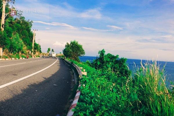đường Hoàng Sa, những con đường đẹp nổi tiếng ở Đà Nẵng