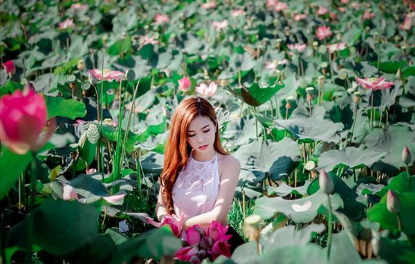 Hồ Sen Xuân Hòa là địa điểm tham quan lí tưởng trong chuyến du lịch Đà Nẵng