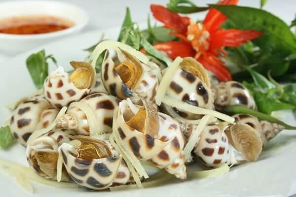 Ốc hương xào dừa của Đà Nẵng rất tươi ngon
